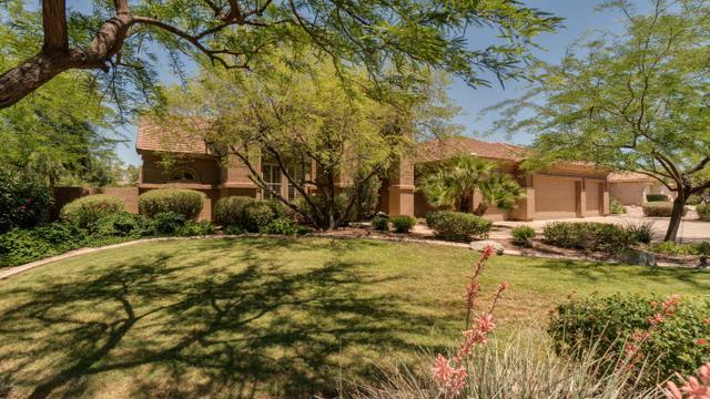 1144 W Enfield PlChandler, AZ 85286