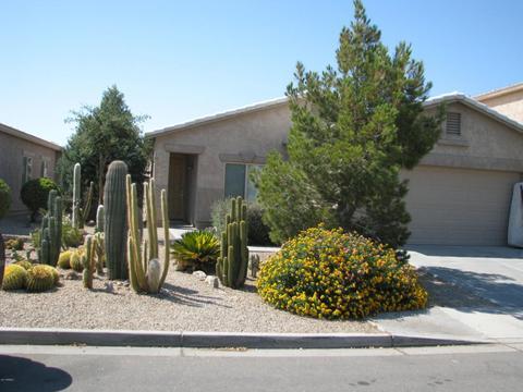 872 E Canyon Rock RdSan Tan Valley, AZ 85143