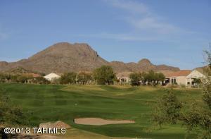 12980 N Desert Flora Ln, Marana AZ 85658