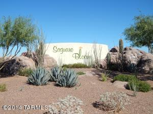 8861 W Irongate Rd, Marana AZ 85653