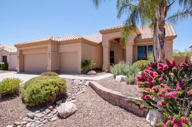 11127 N Divot DrOro Valley, AZ 85737