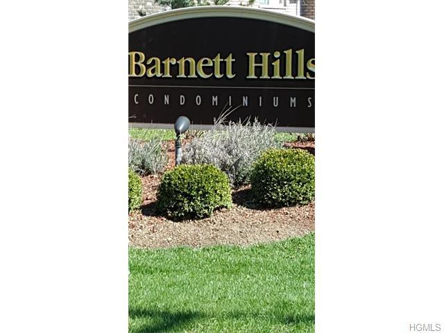 4 Barnett Dr #APT 4-1, Monroe NY 10950