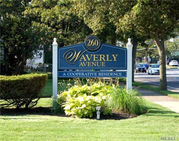 260 Waverly Ave #1A Patchogue, NY 11772