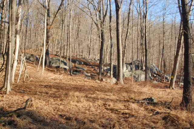 80 Canopus Hollow Road, Putnam Valley, NY 10579