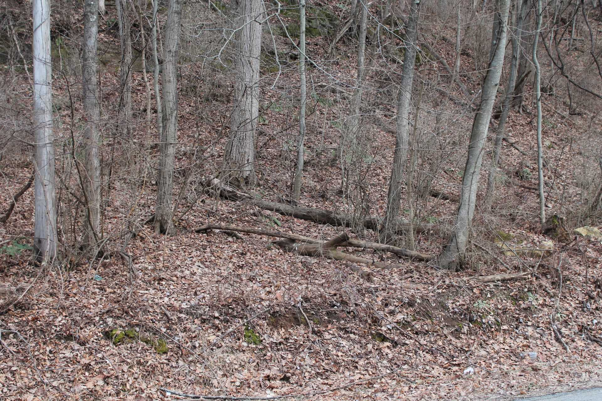 Old Pawling Road, Dover, NY