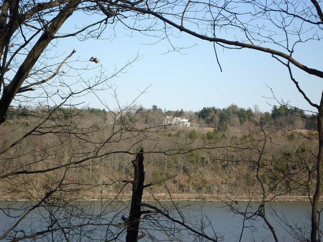 Cross Creek Run, Lloyd, NY 12528