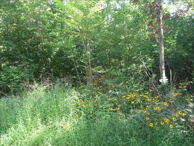 8 Shady Tree Ln, Poughkeepsie Twp, NY 12603