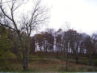 37 Freedom Road, Pleasant Valley, NY 12569