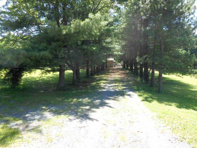 342 Posson Hill Rd, Middleburgh, NY 12122