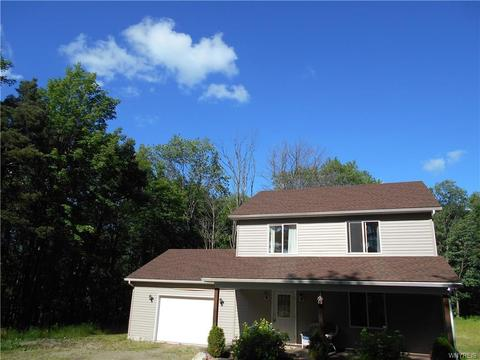 8556 Rohr Hill Rd, East Otto, NY 14729