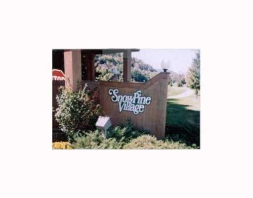 A 301 Snowpine Village, Ellicottville NY 14731