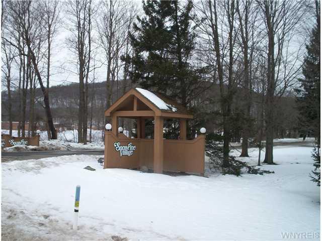C103 Snowpine Vlg, Ellicottville NY 14731