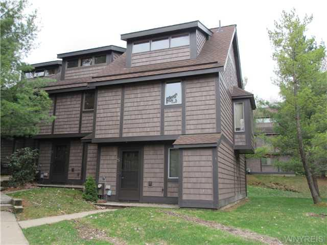 8 Centerline Rd-the Woods, Ellicottville NY 14731
