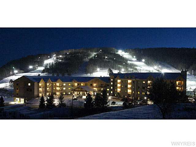 6557 Holiday Valley Rd #APT 534536-4, Ellicottville NY 14731
