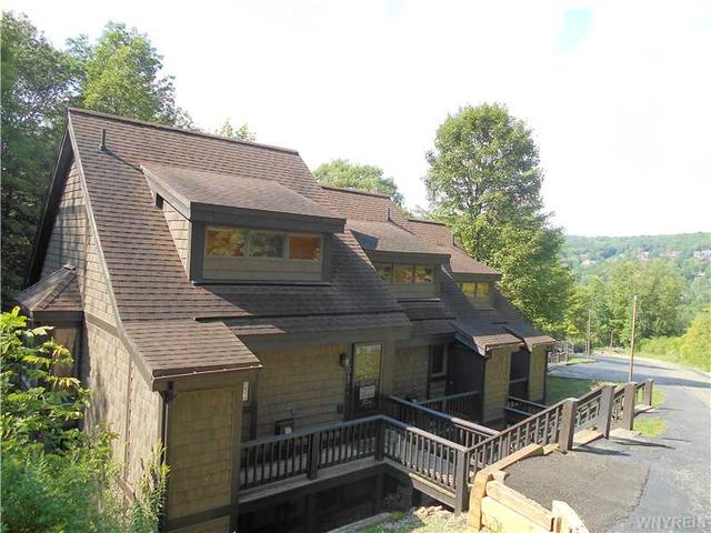 61 Valley View Road-the Woods, Ellicottville NY 14731