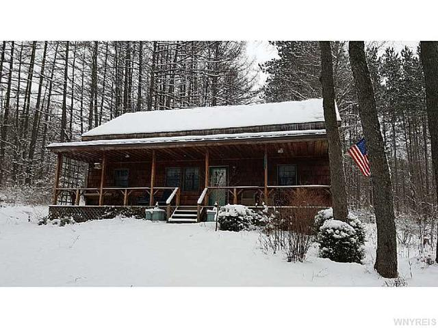 8611 Route 219, Ellicottville NY 14731