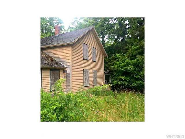 8471 Stanfield Rd, Colden, NY 14033