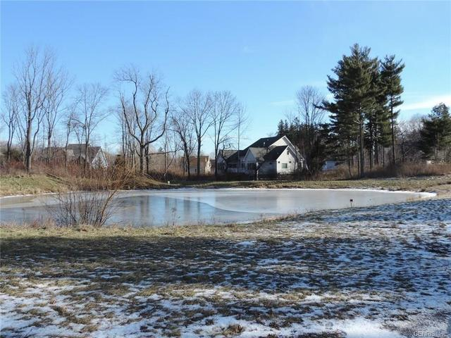 1390 Silverheel Run, Webster, NY 14580