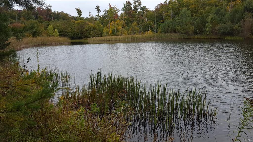 758 Beaver Meadow Road, Smyrna, NY 13464
