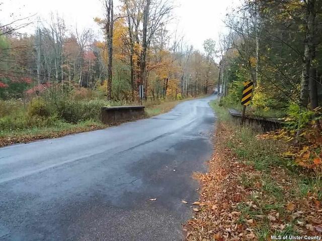 Tbd Beaverdam Road, Ellenville, NY 12428