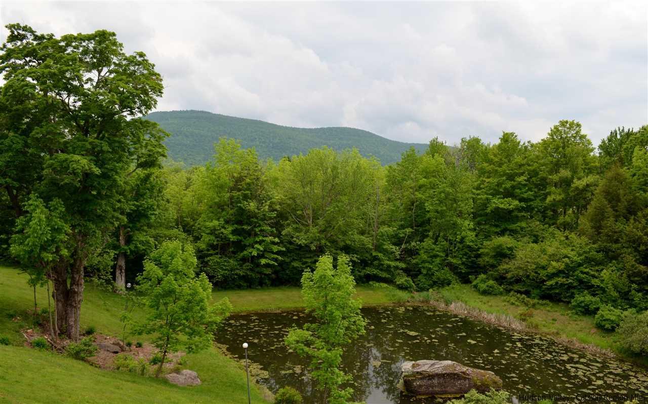 25 Mountain View Estates #B-9, Jewett, NY 12444