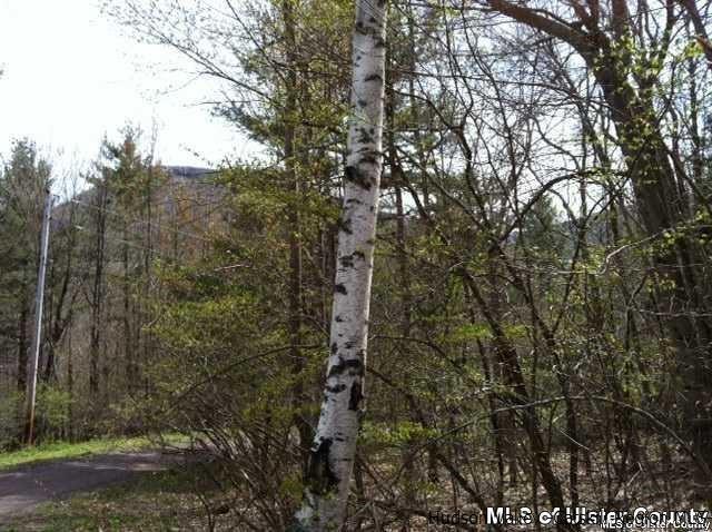 Upper Camp Schoharie Road, Hunter, NY 12442