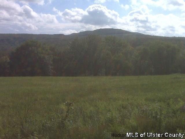 Off Red Hill Knolls, Grahamsville, NY 12740
