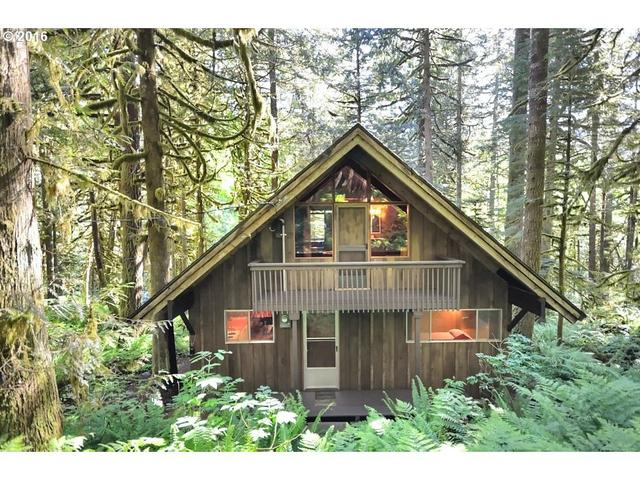 11 Road 12, Rhododendron, OR