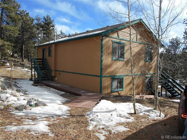 66 Forest Dr, Bailey CO 80421