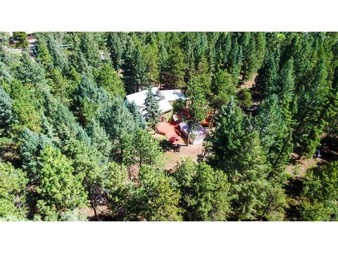 123 Saddle DrWoodland Park, CO 80863