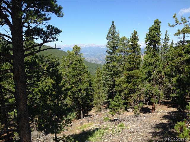 293 Mountain View Dr, Idaho Springs, CO