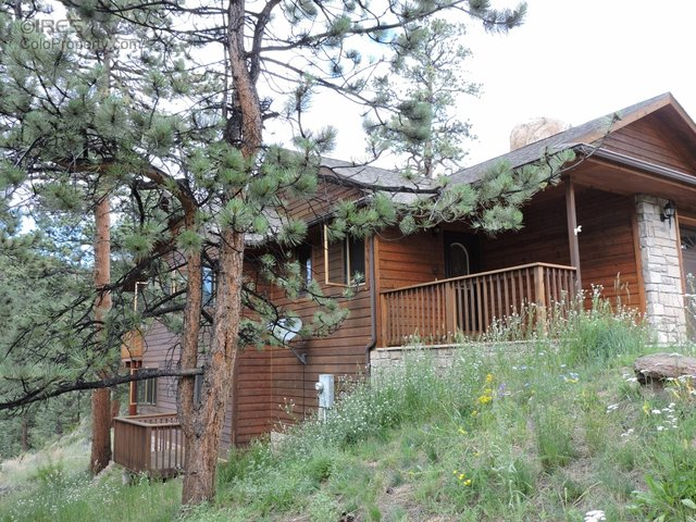 272 Steamer Ct, Estes Park, CO