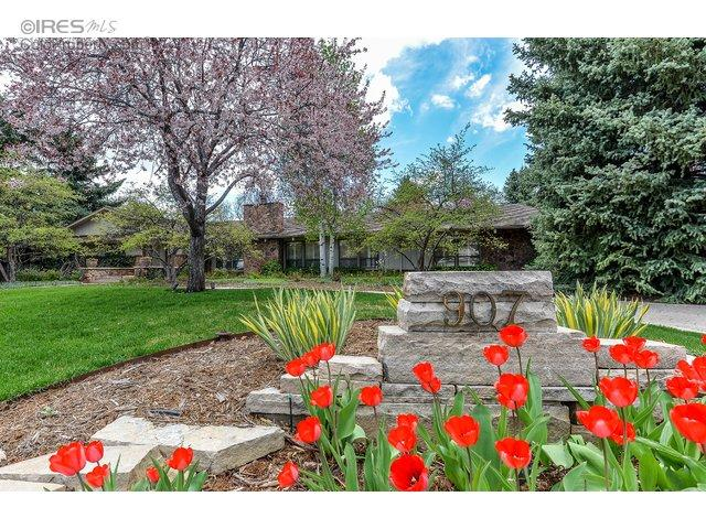 907 Shore Pine Ct, Fort Collins CO 80525