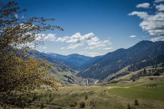 584 Whitewater Wilderness Dr, Pollock, ID 83547