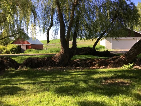 1055 Hazeltine Road, Moscow, ID 83843