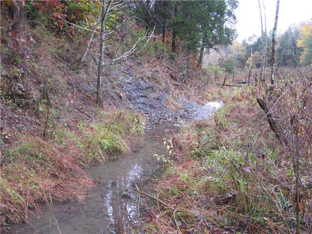 171 Lovelady Hollow Ln, Tennessee Ridge TN 37178