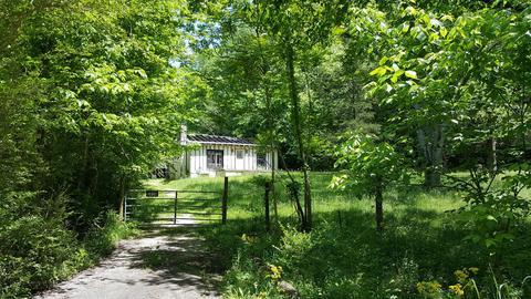 3839 Knight Dr, Whites Creek, TN 37189
