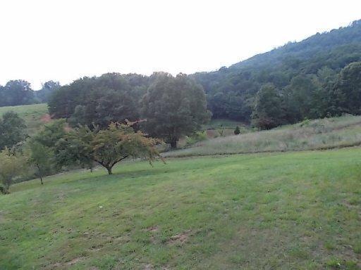 1023 Reagan Valley Rd, Tellico Plains TN 37385