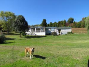 103 Robinson Dr, Lenoir City, TN