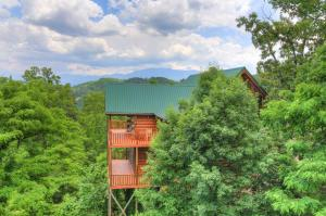 3221 Engle Town Rd, Sevierville TN 37862