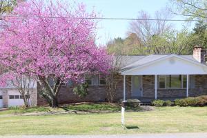7825 Ewing Rd, Powell TN 37849