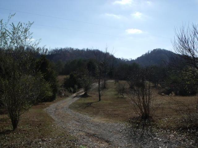 351 Jd Lee Farm RdTellico Plains, TN 37385