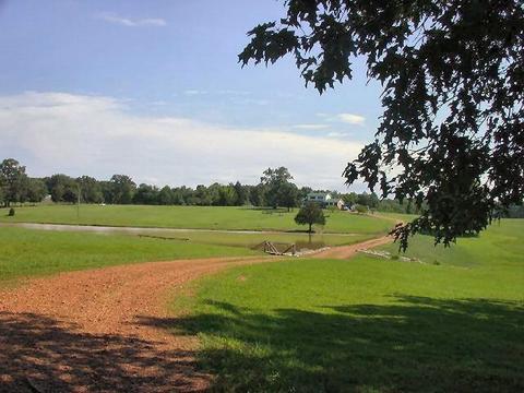 1517 Neely Sharp Rd, Adamsville, TN 38310
