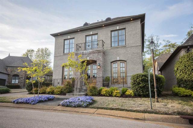 6674 Old Ivy Cv, Memphis TN 38119