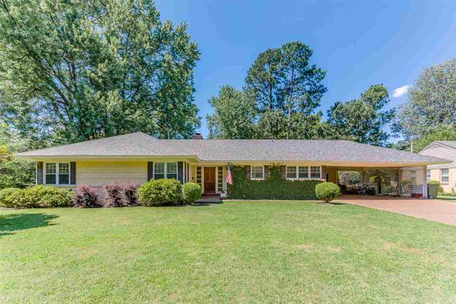 4164 Hedge Hills Ave, Memphis TN