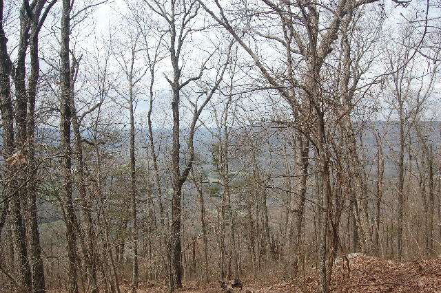 2 W Bluff Road, Cloudland, GA 30731