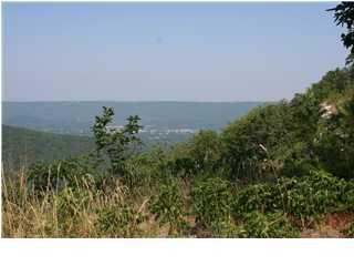 42 Laurel View Dr, Rising Fawn, GA 30738