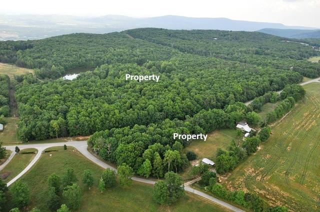 905 Highway 157, Lookout Mountain, GA 30750