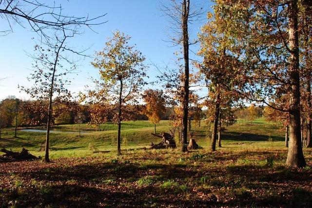 1585 New Home Loop, Trenton, GA 30752