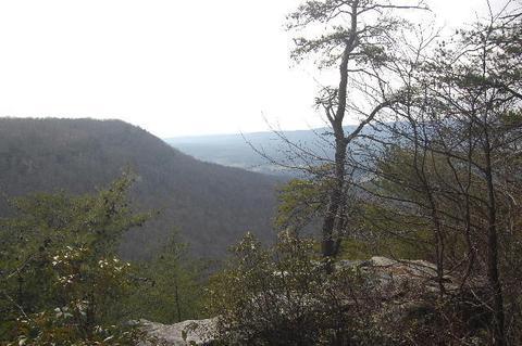6 Tatum Overlook, Cloudland, GA 30731